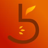 Früchte Braun icon