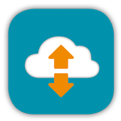 FREICON Secure Data Space icon