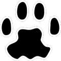 PAW Server for Android