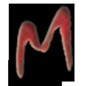 LNdM Tour Mitte icon
