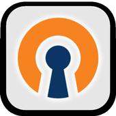 OpenVPN Settings icon
