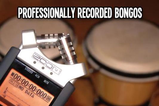 Bongos - Dynamic Drums screenshot 1