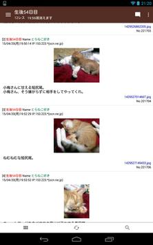 Azuki screenshot 5