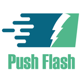 Push Flash Media Demo icon