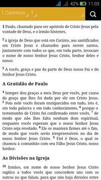 Biblia Sagrada - NVI apk screenshot