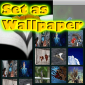Internet Photos Wallpapers icon