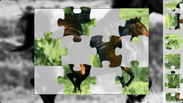 Puzzle Horses poster