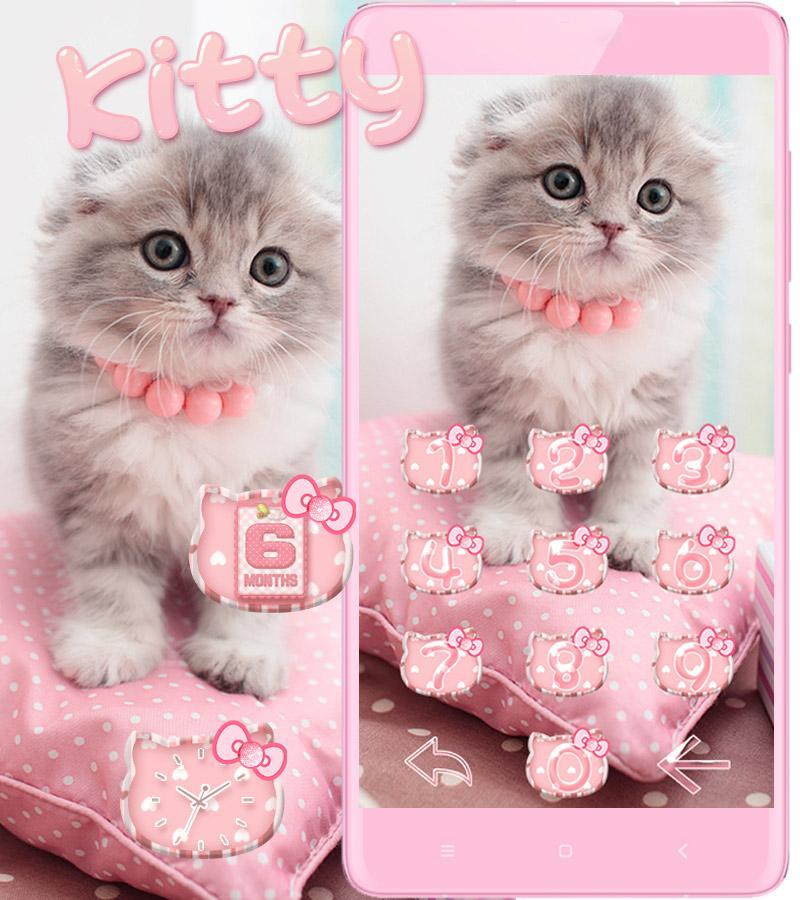 Wallpaper Kucing Lucu Warna Pink