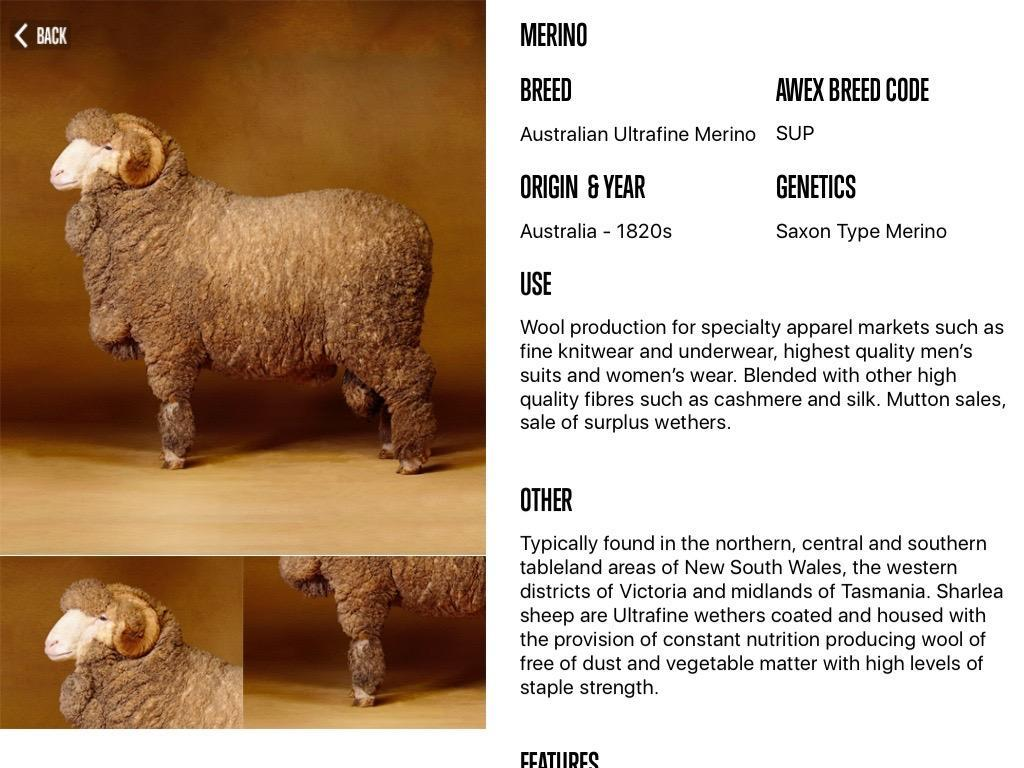 Sheep Breeds by AWEX for Android - APK Download