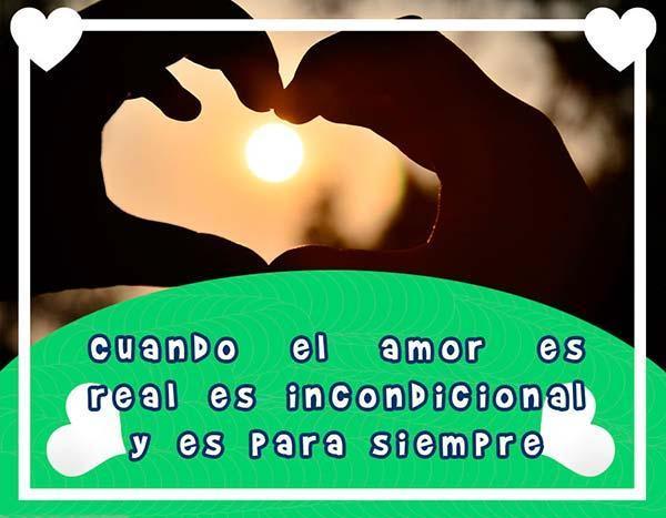 Frases Para Un Amor Fiel для андроид скачать Apk