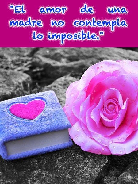 Frases Bonitas Para La Madre For Android Apk Download
