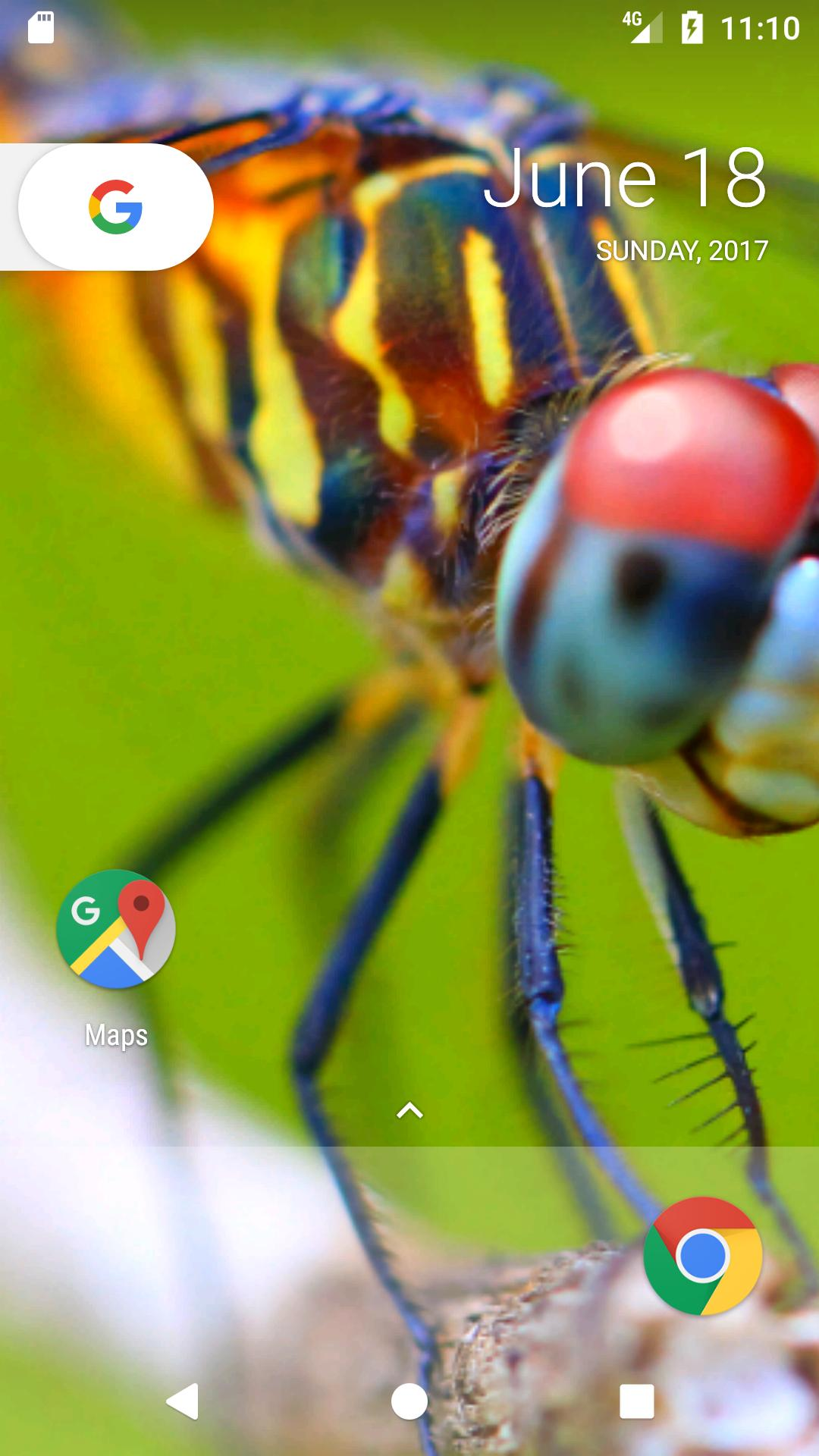 Best dragonfly hd free wallpaper for android apk download - Free dragonfly wallpaper for android ...