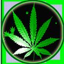 Weed Rasta Smoke Wallpapers & Backgrounds APK