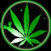 ikon Weed Rasta Smoke Wallpapers & Backgrounds