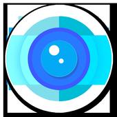 Sel.flip icon