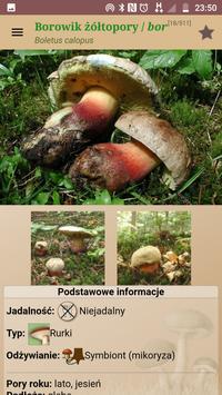 Atlas NaGrzyby.pl Paczka zdjęć Mniejsza screenshot 1