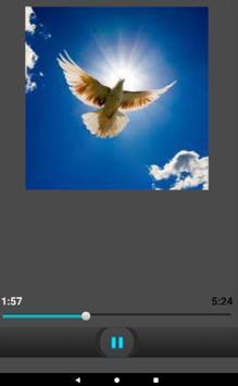 Litany of the Holy Spirit / Ghost English Audio apk screenshot
