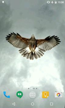 Eagle Live Wallpaper apk screenshot