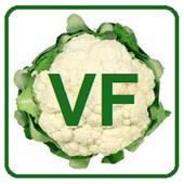 Vefucart icon