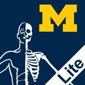 MSK Anatomy Lite - SecondLook icon
