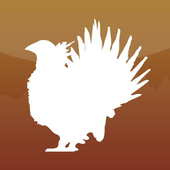 The Sage-Grouse in Utah icon