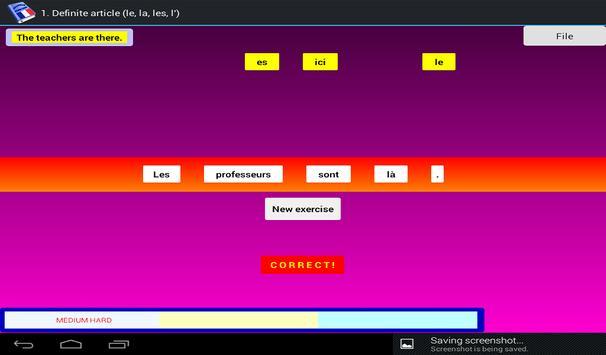 French Grammar Exercises F screenshot 18