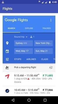 FLIGHTS Google Flights poster