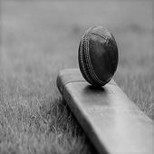 সরাসরি ক্রিকেট স্কোর icon