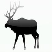 Elk Body Condition Scoring icon