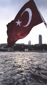 Türk Bayrağı ve Bozkurt Duvar Kağıtları apk screenshot