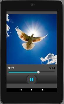 Letanía del Espíritu Santo Español Audio apk screenshot