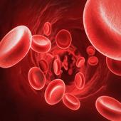 Red Blood Cells Live Wallpaper APK