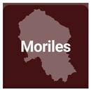 Moriles aplikacja