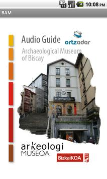 Archaeological Museum Biscay poster