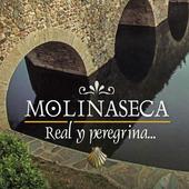 Molinaseca icon