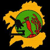 MicoKey icon