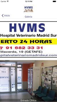 HOSPITAL VET. MADRID SUR poster