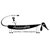 Veterinaria Animalia icon