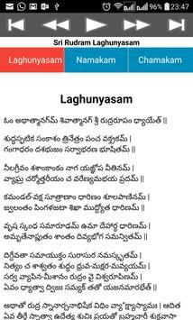 Rudram Namakam Chamakam screenshot 6