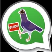 Trash Dove for Whatsapp Guide icon