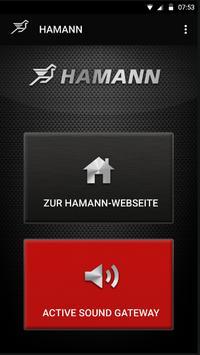 Hamann ActiveSound BLE screenshot 1