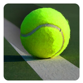 Tennis Player Sim icon
