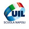 Uil Scuola Napoli 아이콘