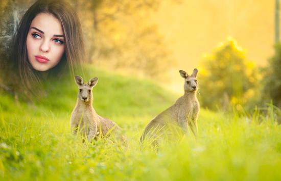 Australia Day Photo Frames apk screenshot