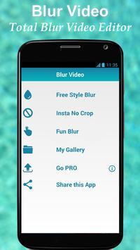 Blur Video poster