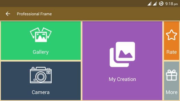 Professional Frame screenshot 1
