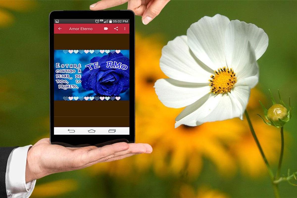 Frases De Amor Eterno Con Flores Hermosas Fur Android Apk