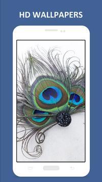 Birds Feathers HD Wallpapers apk screenshot