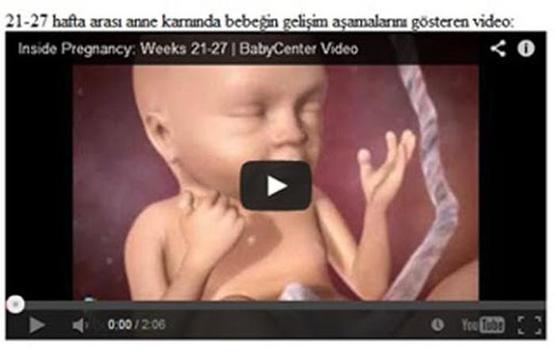 Hafta Hafta Gebelik (Detay) screenshot 2