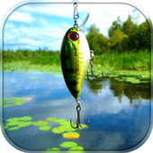 All about fishing icon